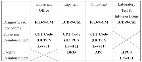 What is the difference between icd and cpt for medical coding the cpt books are updated every three to five years whereas the icd books are updated every 10 to 15 years publicscrutiny Image collections